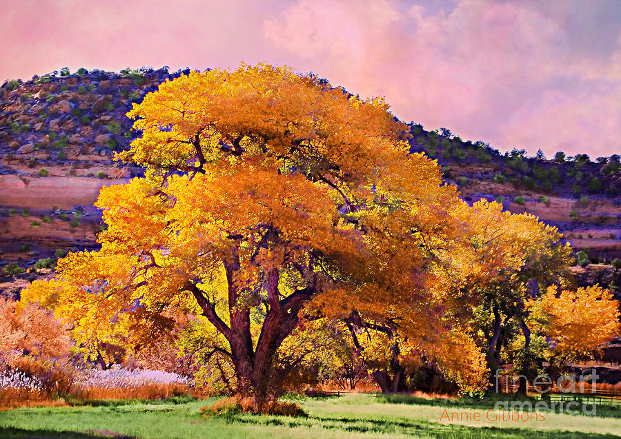Grand Old Cottonwood Tree Digital Art by Annie Gibbons