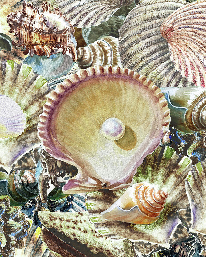 Grand Seashell Collection Painting I Painting