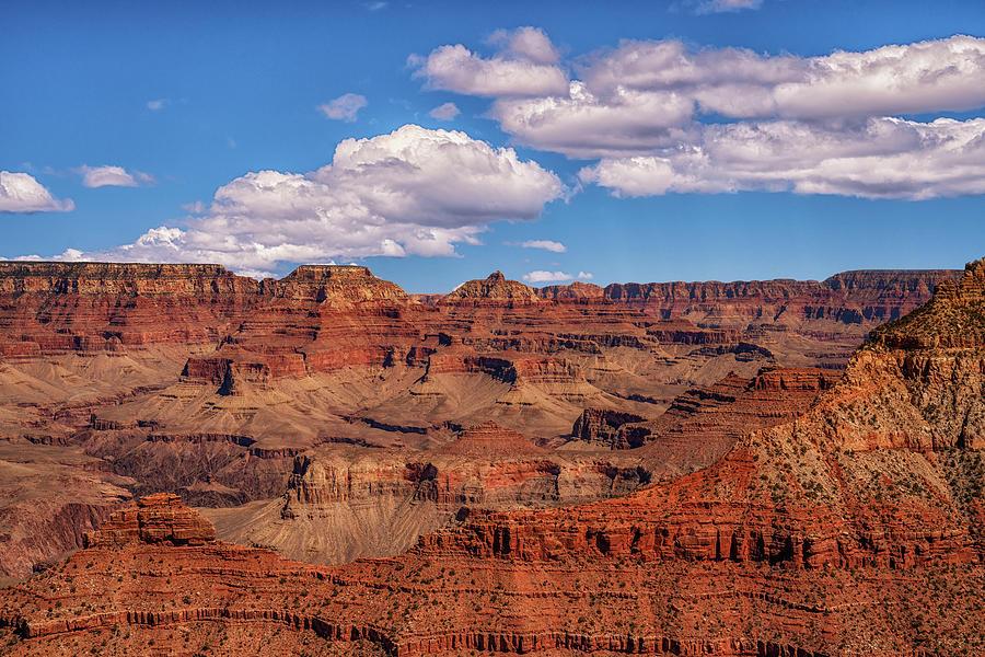 Arizona Photograph - Grand Views by Framing Places