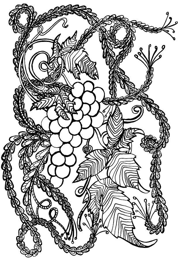 Grapes Drawing