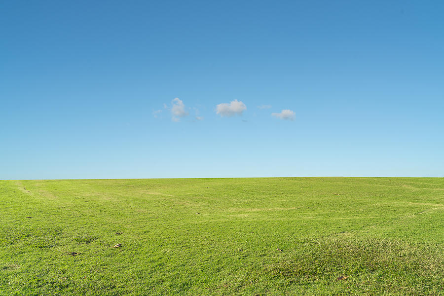 Grass background against sky Photograph by Kehan Chen