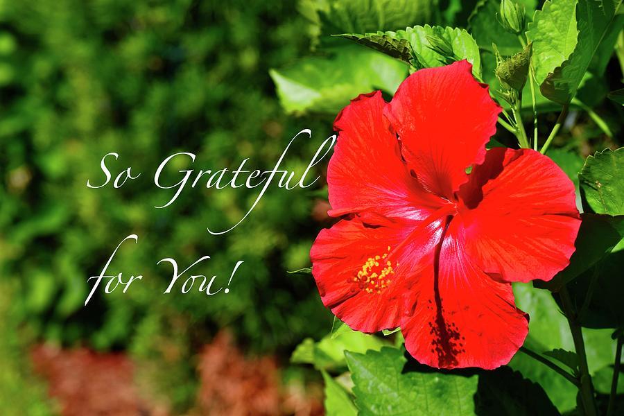 Grateful Heart Flower by Debra Grace Addison