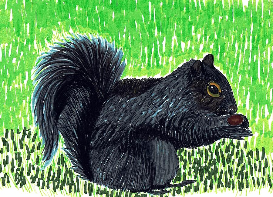 Squirrel Drawing - Gray Squirrel by Bonnie McKeegan