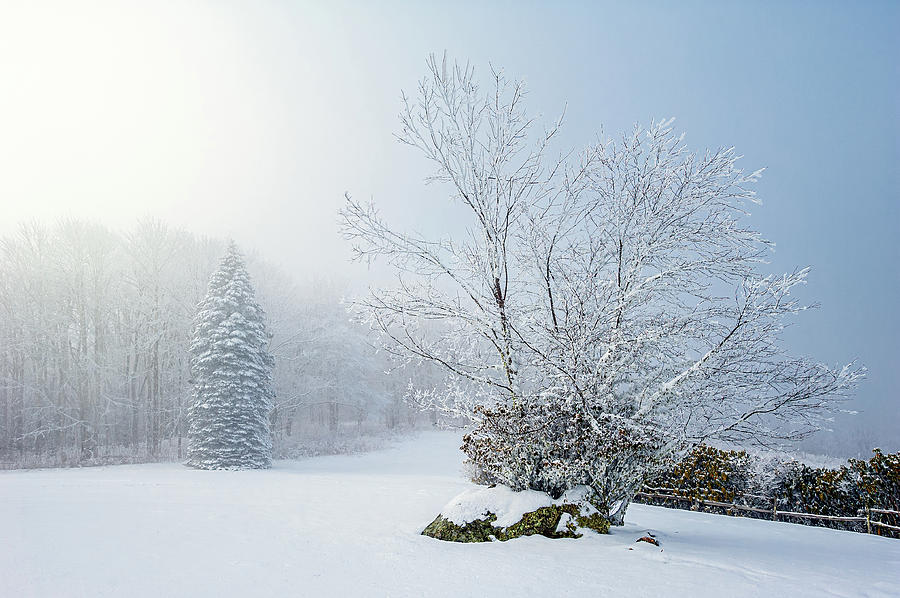 Landscape Photograph - Great Smoky Mountains North Carolina Winter Serenity by Robert Stephens