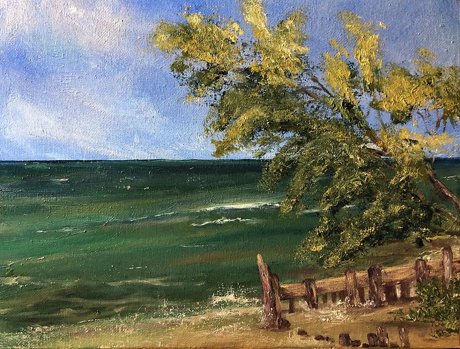 Seascape Painting - Greater Lakes by Rachel Barlow