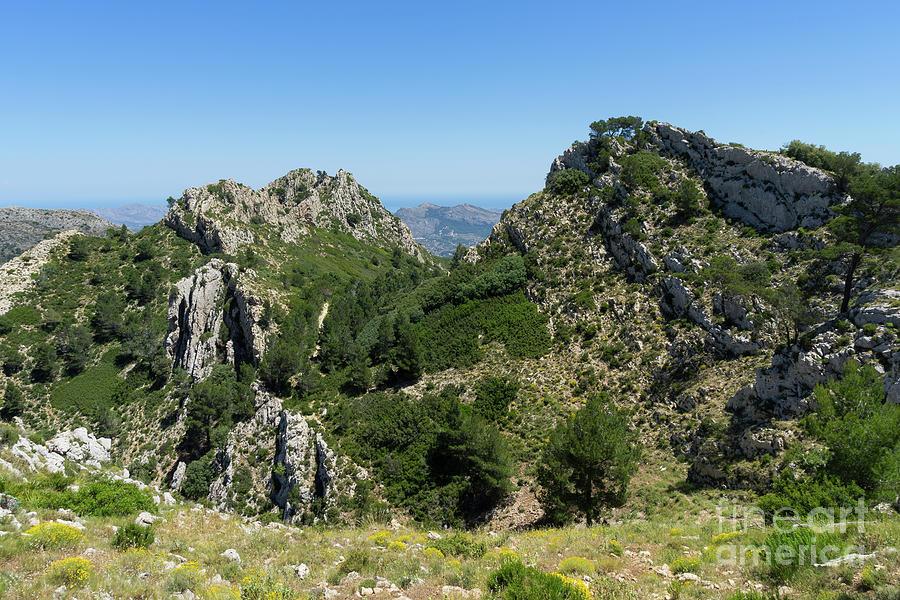 Green Expanse And Mountain Ridge Photograph