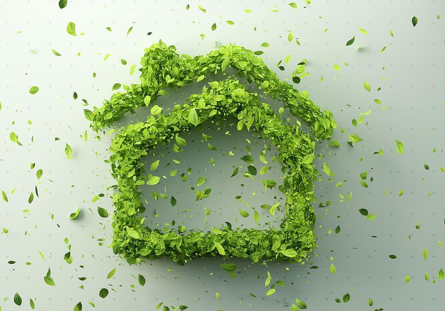 Green home Photograph by Andriy Onufriyenko