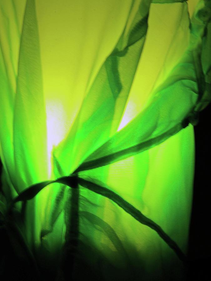 Green Light Abstract Photograph