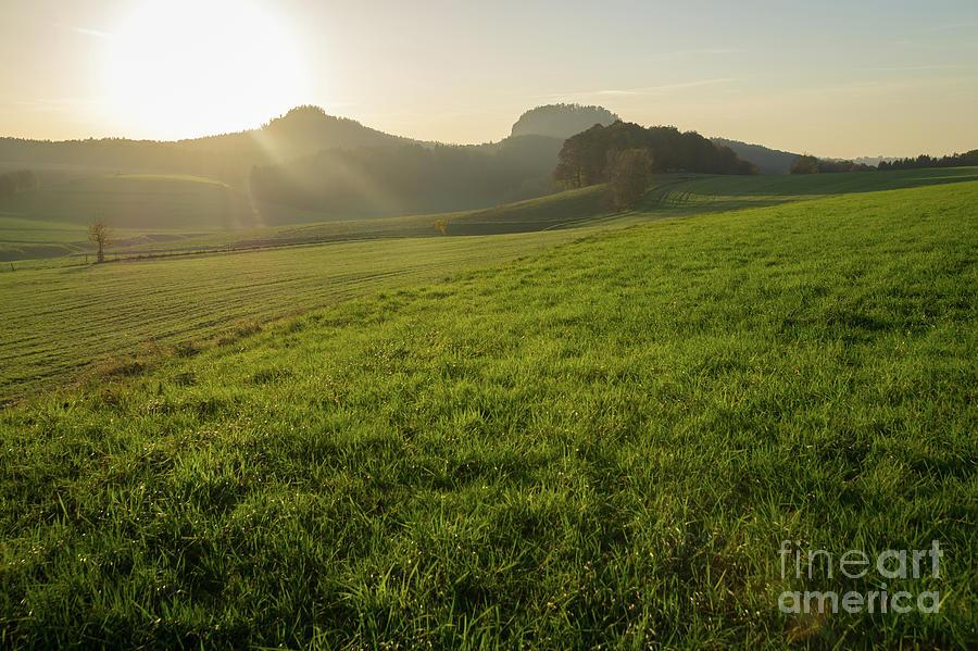 Green Meadow And Golden Light 1 Photograph