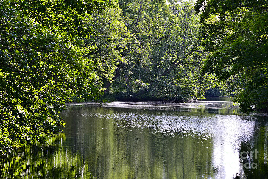 Green River 4 Photograph