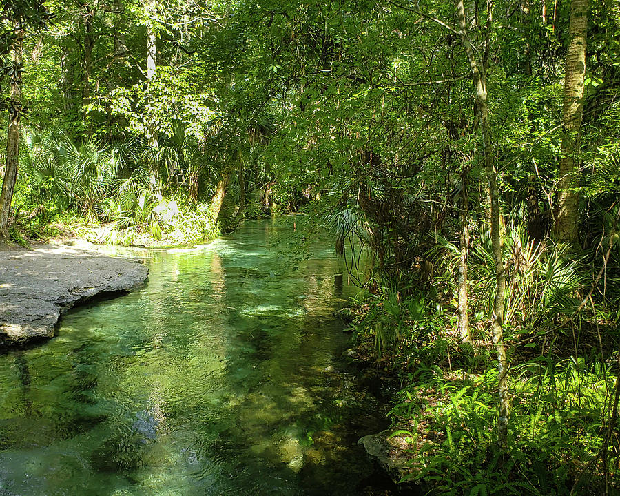 Eco Photograph - Green Summer at Rock Springs by Jo M