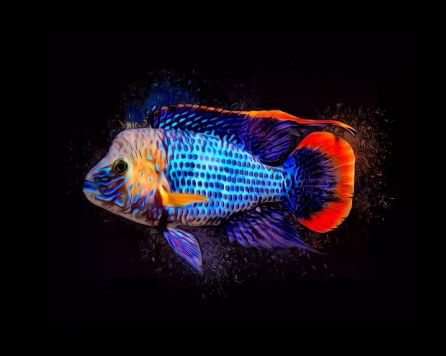 Green Terror Digital Art - Green Terror Cichlid Fish by Scott Wallace Digital Designs