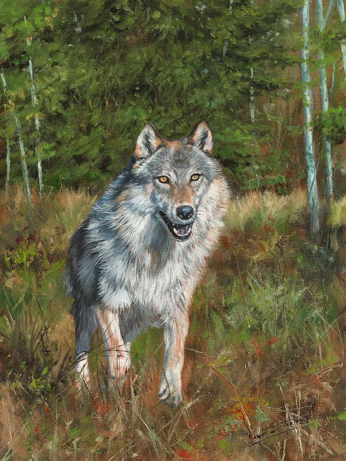 Grey Wolf Running Painting