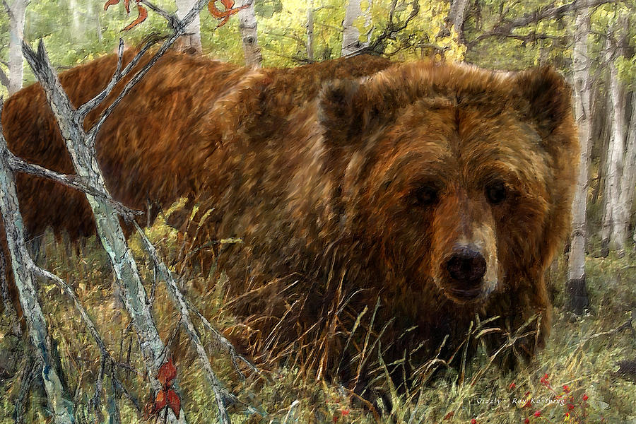 Grizzly Bear by Roy Kastning