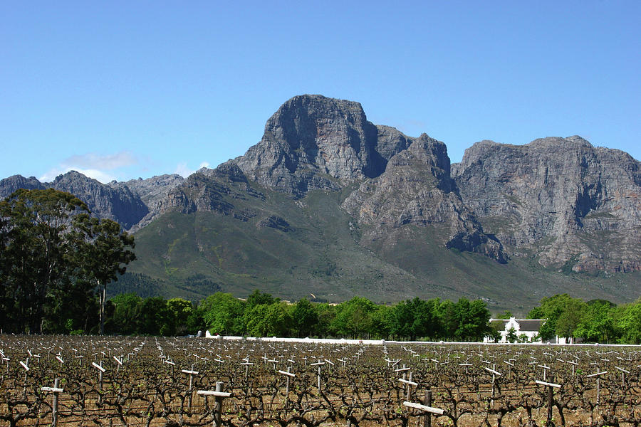 Winelands Photograph - Groot Drakenstein, Franschhoek by Geoff Whiting