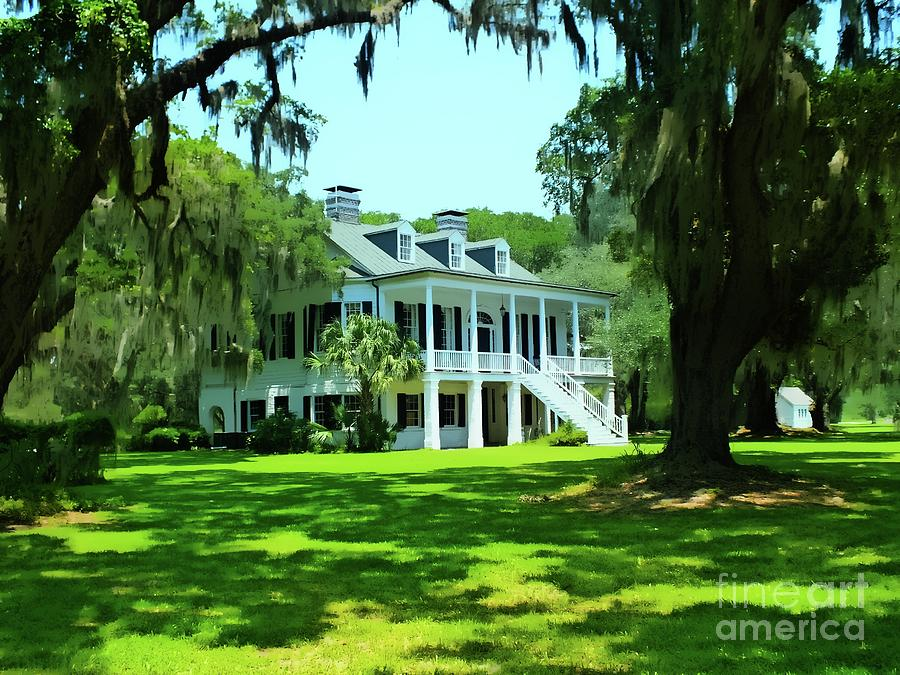 Grove Plantation - Adams Run Glory by Joseph Hendrix