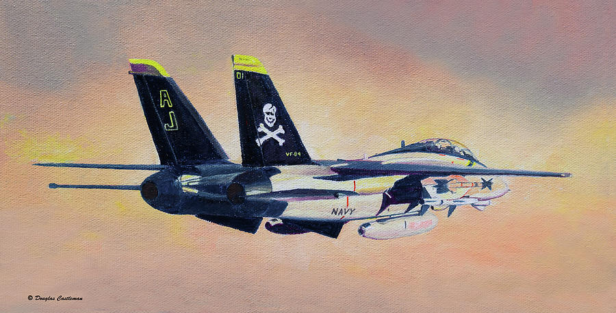 Grumman F-14A by Douglas Castleman