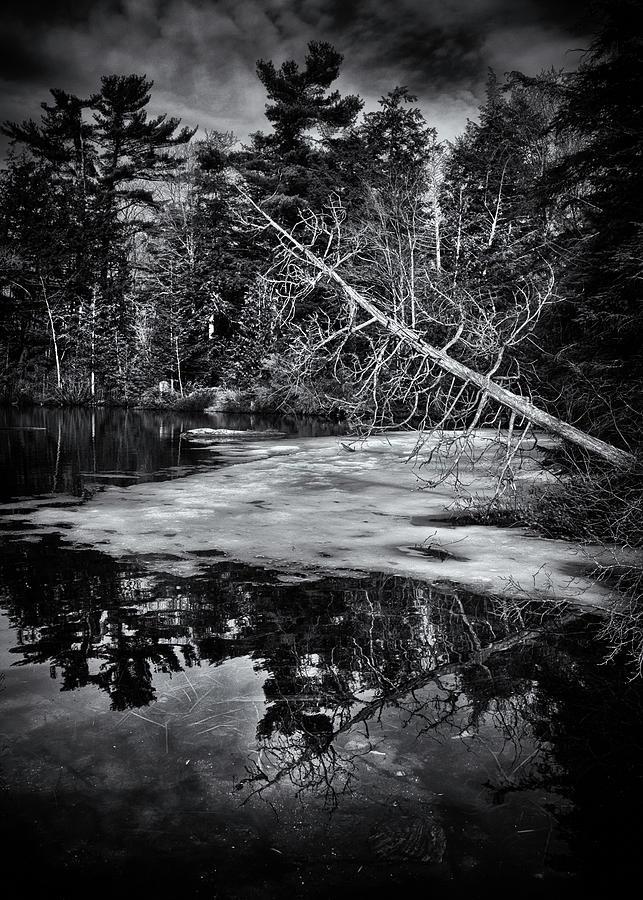 Gullwing Lake No 2 Photograph