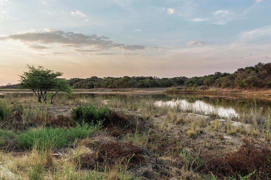 Evening Light on the Okvango River by Belinda Greb
