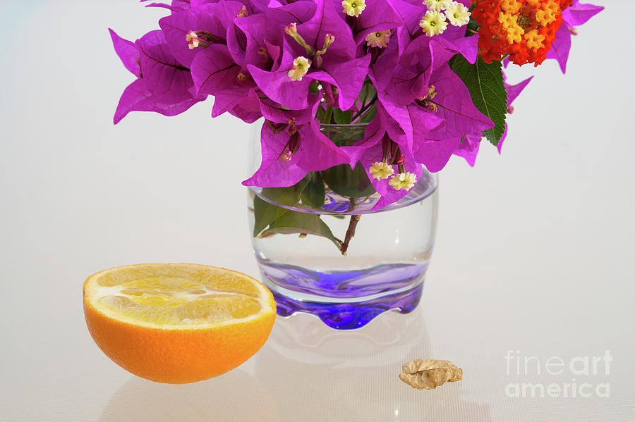 Orange Fruit And Pink Flowers In The Mediterranean Sunlight Photograph