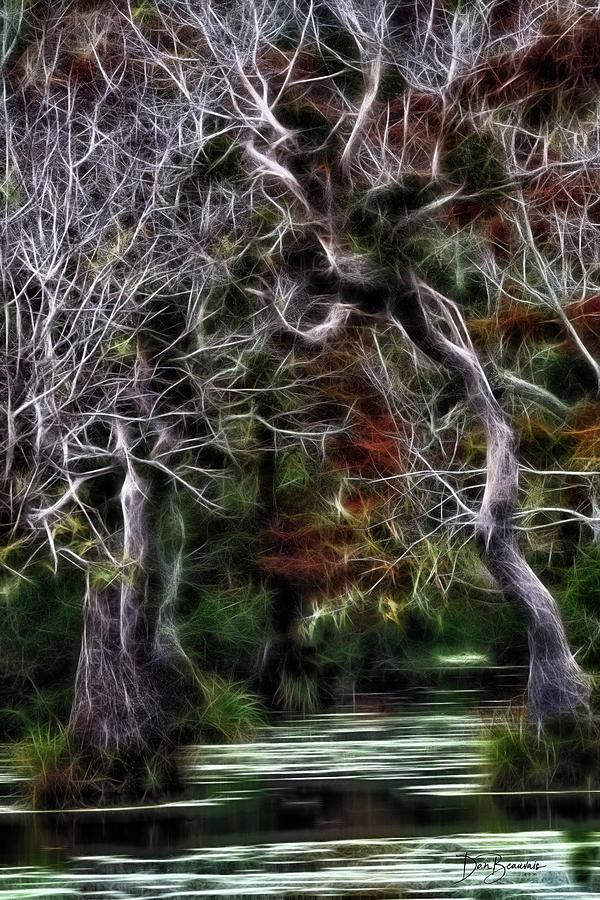 Halloween Swamp 6258 Photograph