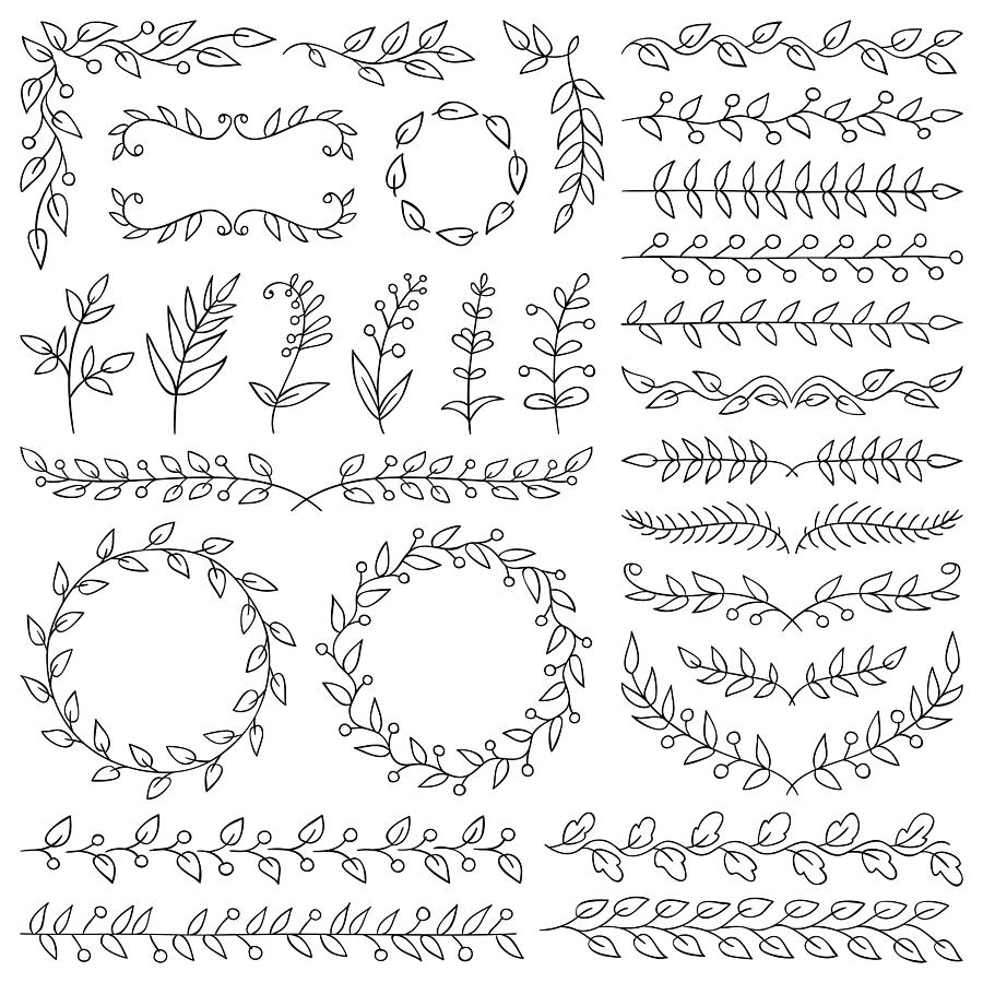 Hand drawn plants, dividers, wreaths, border frames Drawing by Ulimi