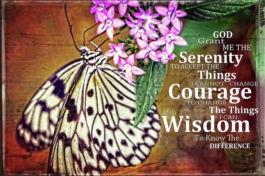 Serenity Prayer Painting - Hanging on Serenity Prayer - Butterfly Art - Sharon Cummings by Sharon Cummings