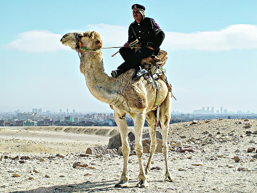 Hanging Out With The Giza Camel Tourist Police by Joseph Hendrix