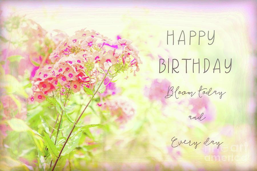 Phlox Photograph - Happy Birthday Flower Card by Marilyn Cornwell