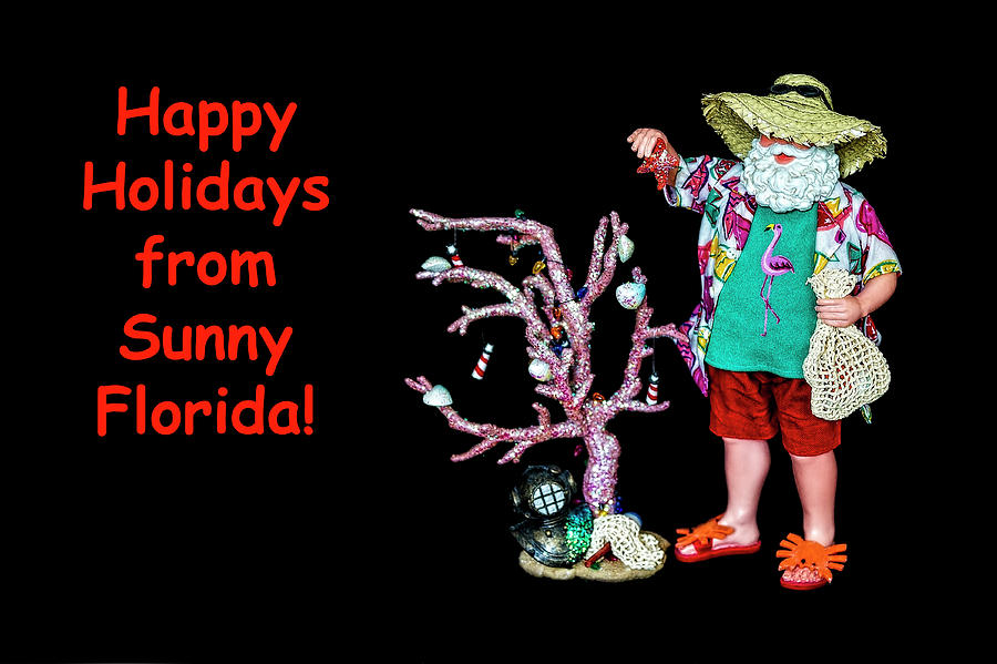 Happy Holidays From Sunny Florida by Kay Brewer