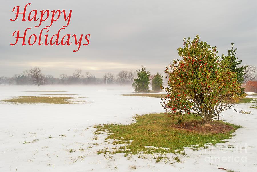 Happy Holidays- Lonely Shrub by Len Tauro