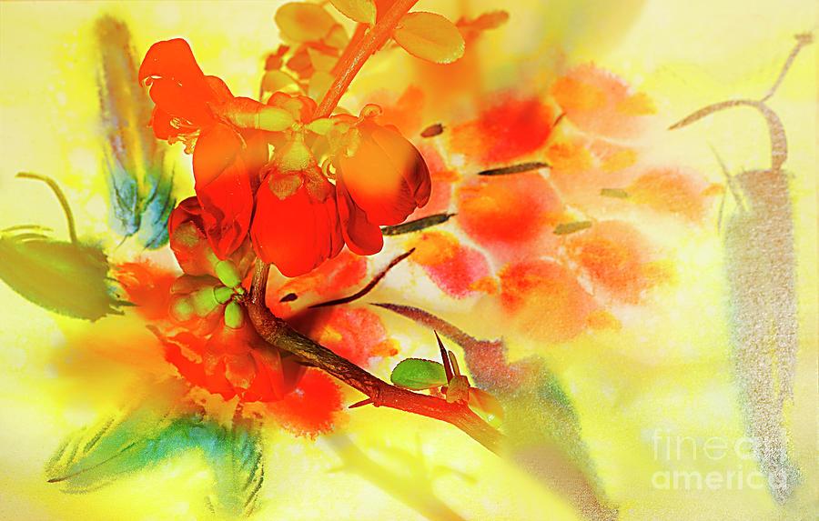 Blossom Photograph - Happy Spring. by Alexander Vinogradov