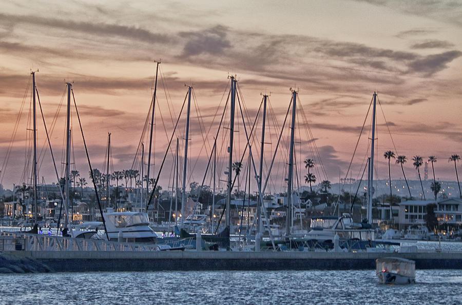 Harbor Life Photograph