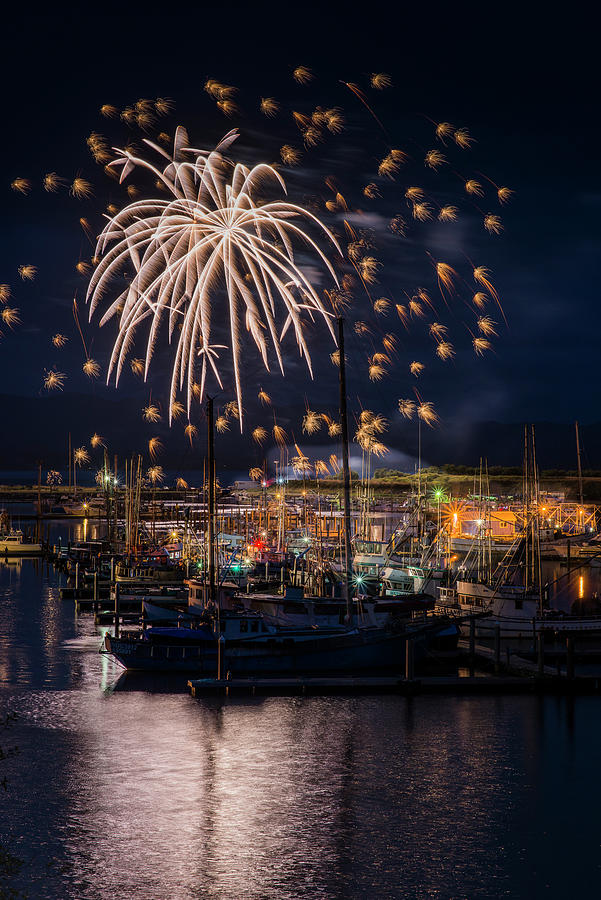 Harbor Lights and Fireworks by Robert Potts