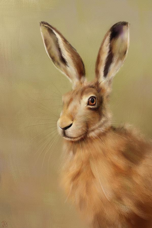 Hare by Joe Gilronan
