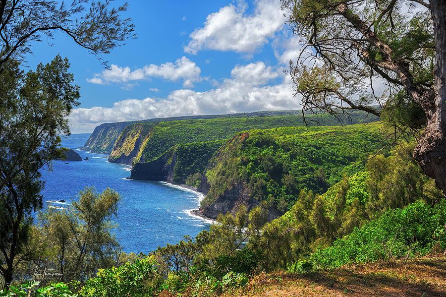Hawaii Photograph - Hawaii Coastline by Jim Thompson
