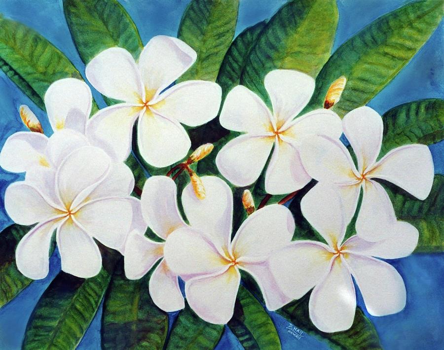 Hawaii Tropical Plumeria Flower  # 220 Painting