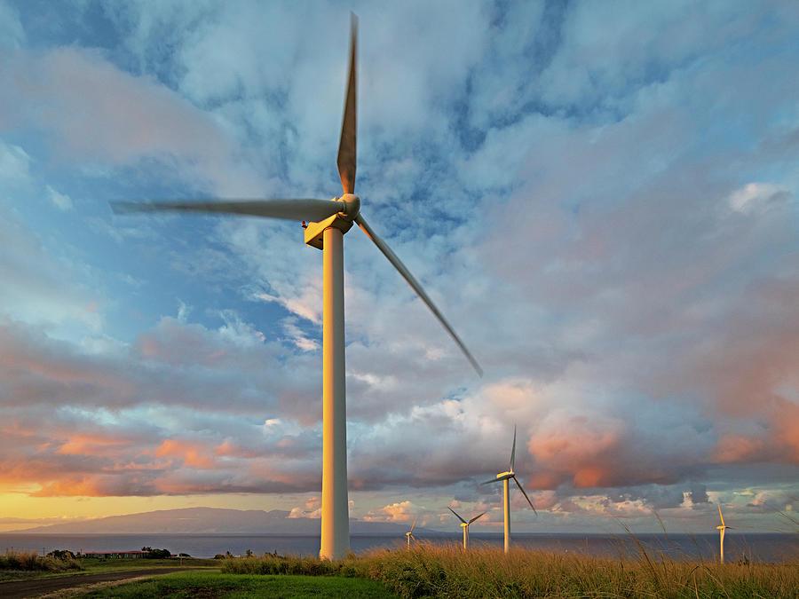 Hawaii Wind Farm Photograph