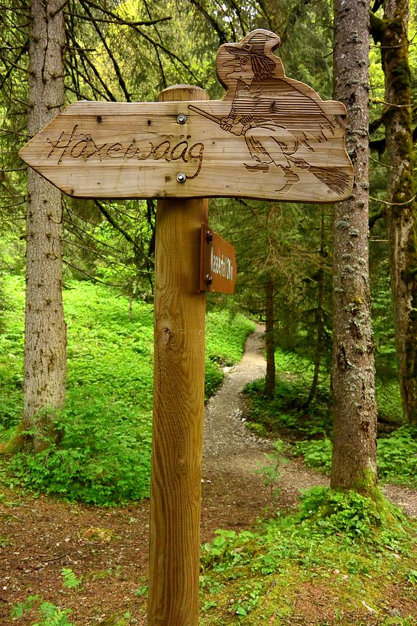 Trail Photograph - Haxewaag Witchs Way, Switzerland by Two Small Potatoes
