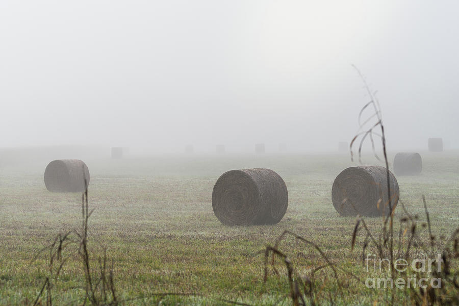 Hay Bales In The Fog by Jennifer White