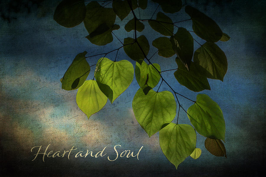 Blue Photograph - Heart and Soul Moody Blue Leaves by Judy Garrard