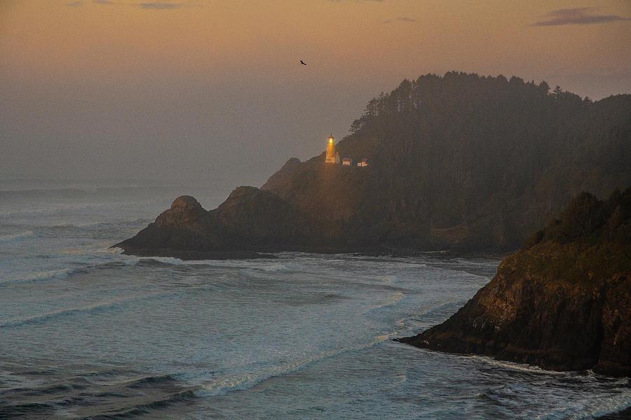 Heceta Head Light Sunset by Matthew Irvin