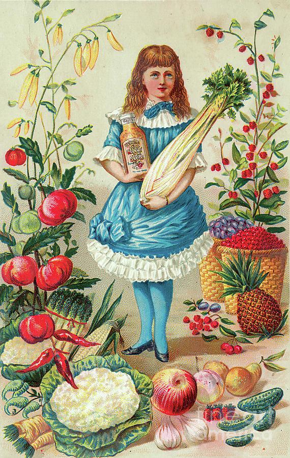 Heinz Celery Sauce Advertisement Painting