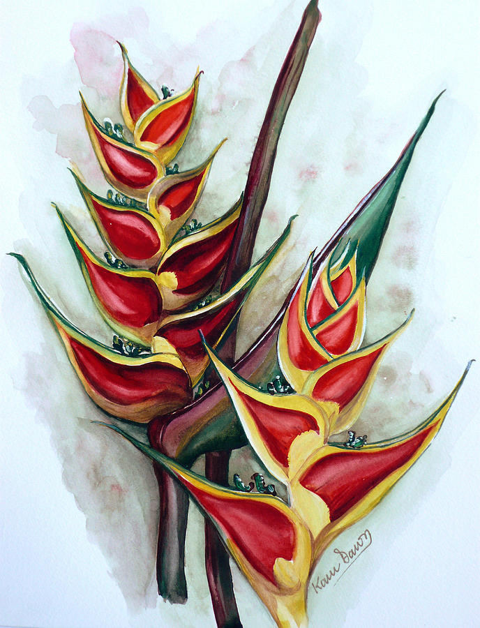 Heliconia Tropicana Trinidad Painting by Karin  Dawn Kelshall- Best