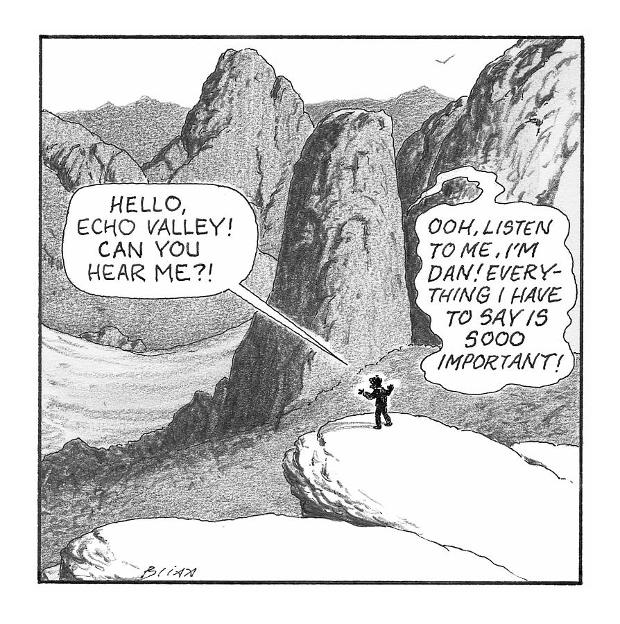 Hello, Echo Valley Drawing by Harry Bliss