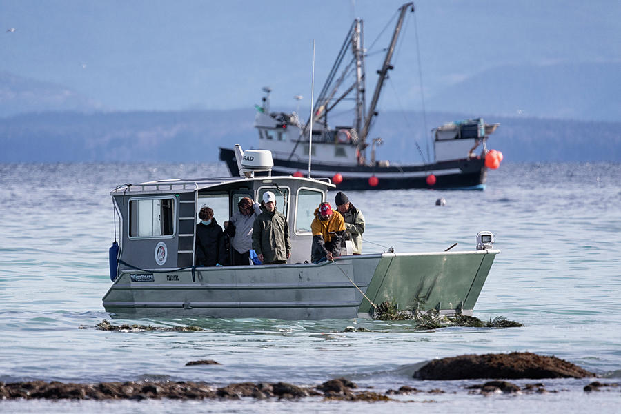 Heritage Fishery Photograph