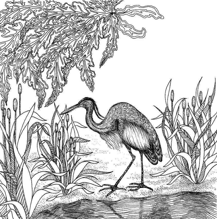 Heron Drawing
