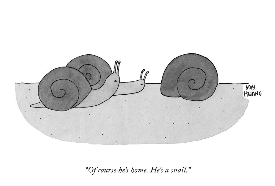 Hes A Snail Drawing by Amy Hwang