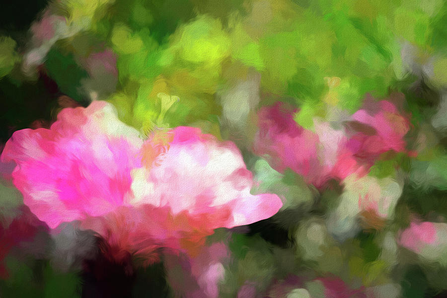 Hibiscus Garden Abstract Photograph