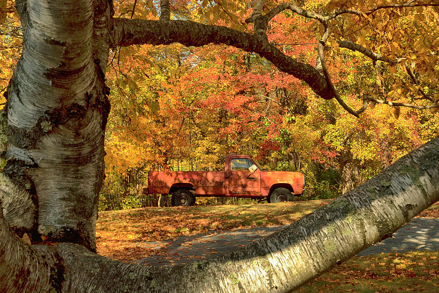 Hidden In The Trees - Autumn In New England Photograph